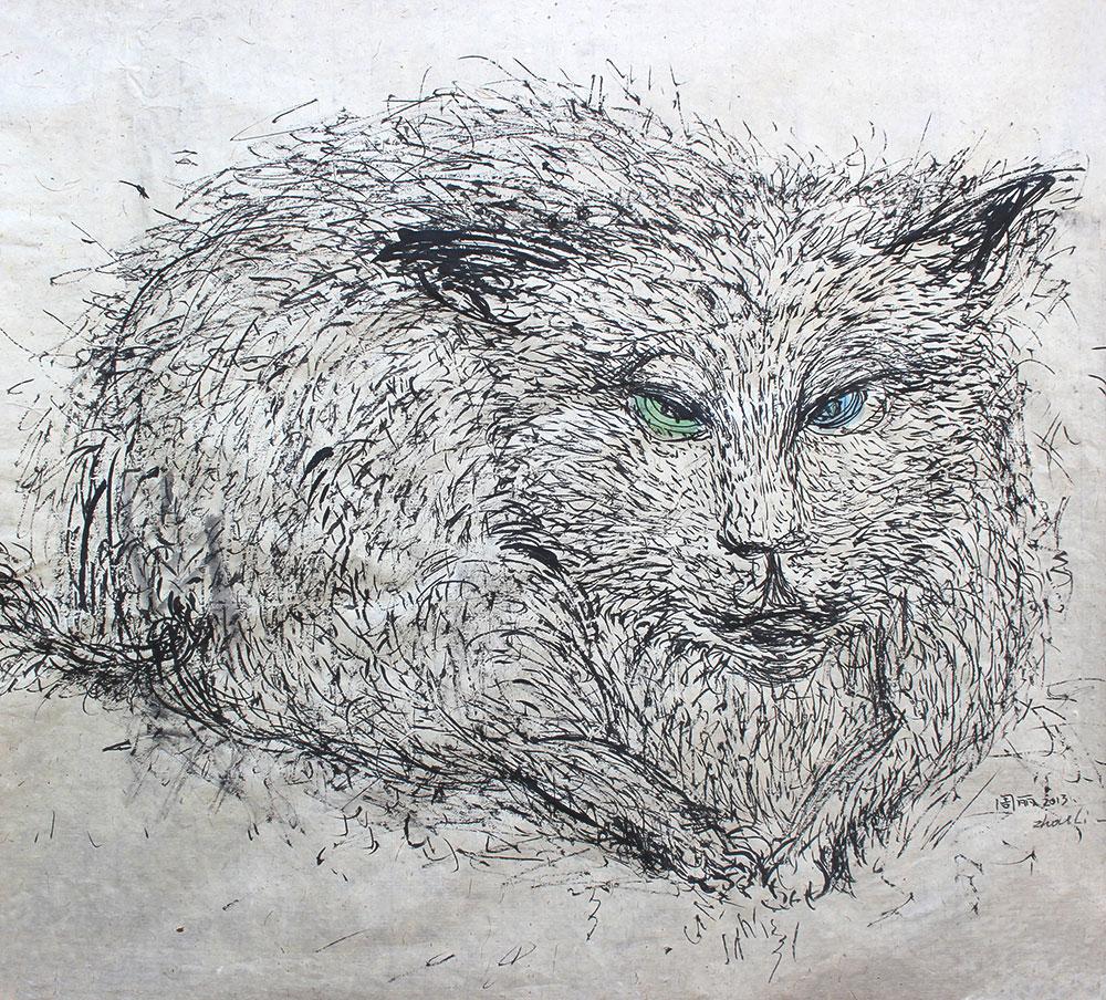 蓝眼绿眼猫