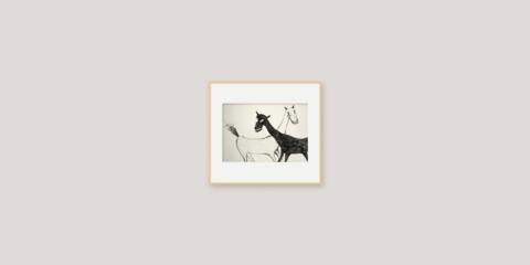 black horse and white horse